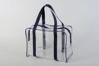 Transparent transport bag