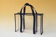 Transparent transport bag
